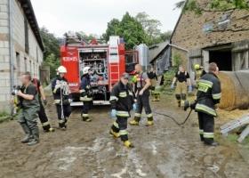 Strażacy pospieszyli na pomoc zwierzęciu
